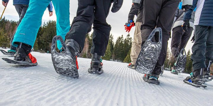 Experience the award-winning Evvo Snowshoe
